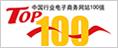 网站top100