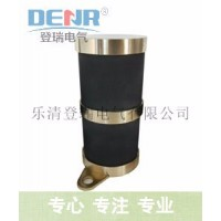 登瑞电气专产LXQ-6,LXQ-10型铜材消谐器,消谐装置